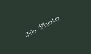 No Photos of the Property