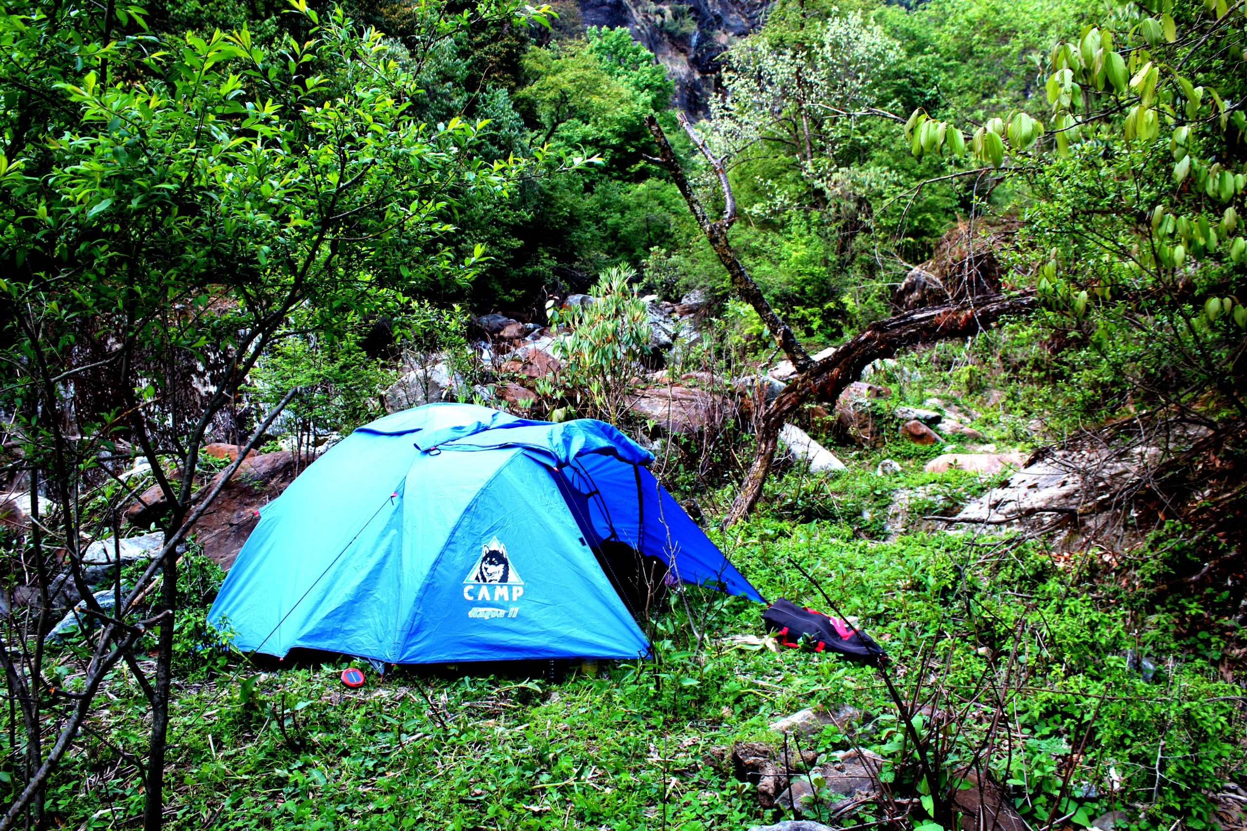 Outdoor one night camping in alpine camp in chopta