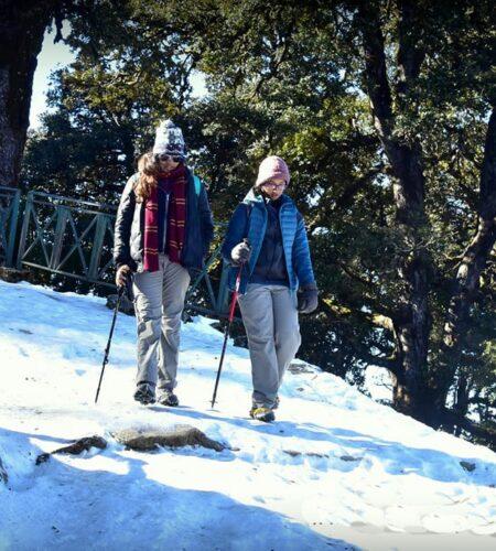 Trekking down on the way to Tungnath to Chopta